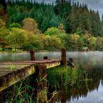 Озеро и мост