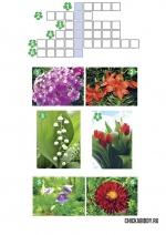 Кроссворд про цветы