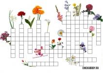 Цветочный  кроссворд