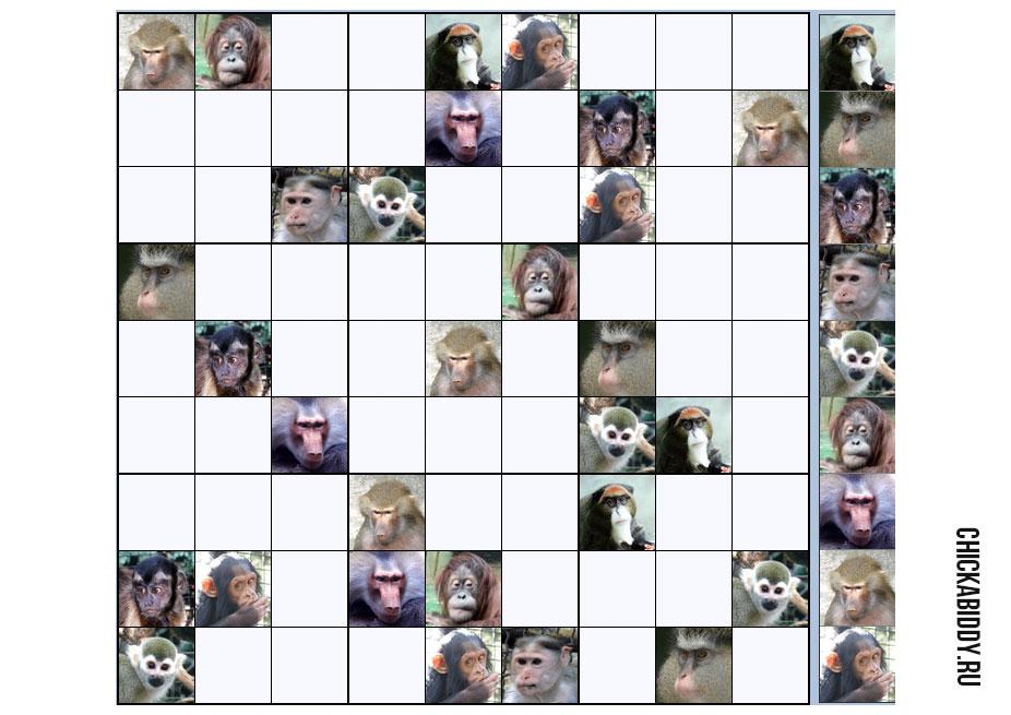 Судоку с обезьянами