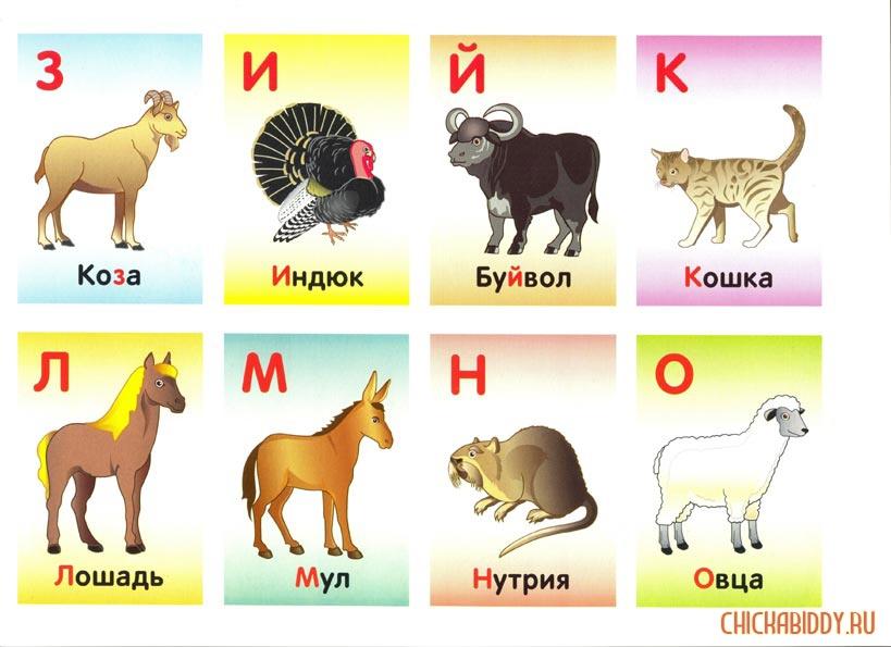 Буквы З-О