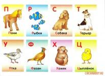 Буквы П-Ц