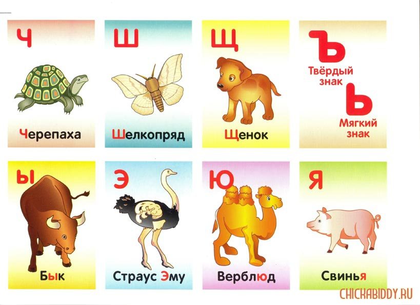 Буквы Ч-Я